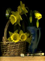 75_Picking_Daffodils