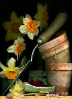 81_Spring_Garden_its_Planting_Time